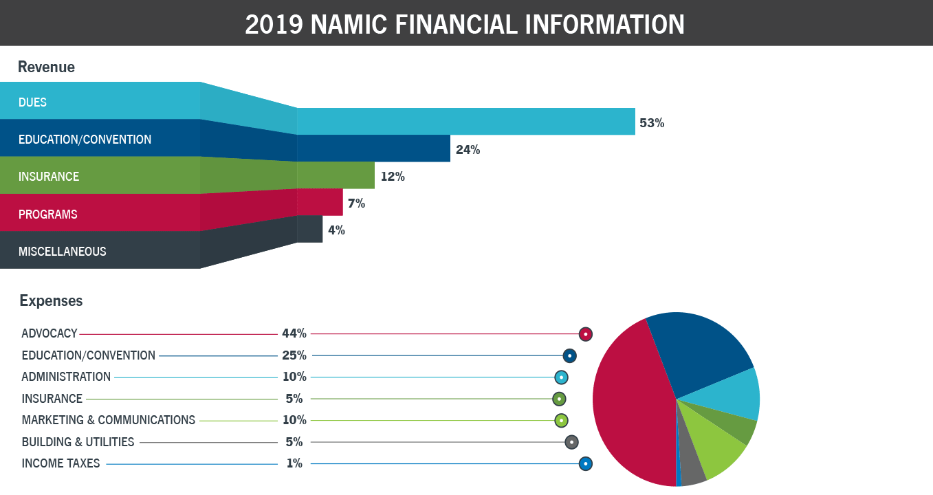 NAMIC 2019 Financial Info
