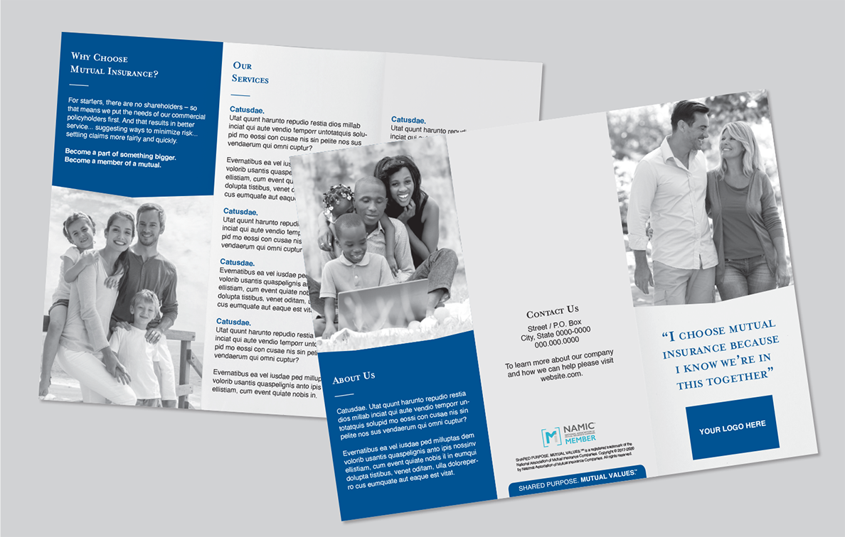 Trifold Brochure Sample